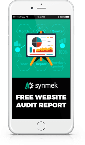 free website performance audit phone